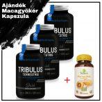 DARK Tribulus Terrestris 120 tabletta (3db) + BIO Macagyökér 60 kapszula (1db)