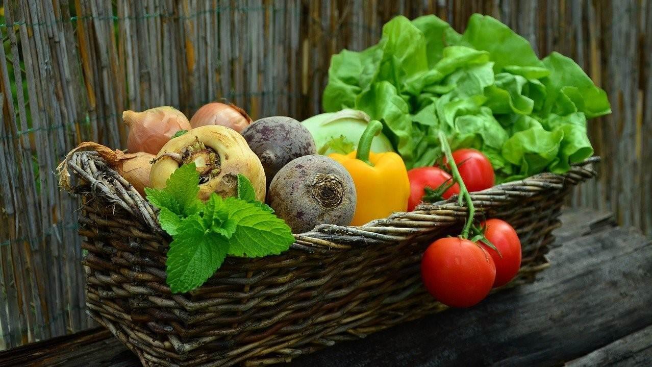 A reformélelmiszerek egészséges alternatívát nyújtanak.